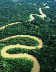Rio Amazonia
