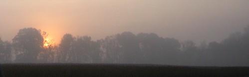 usa fog sunrise us md unitedstates maryland beltsville beltsvilleagriculturalresearchcenter