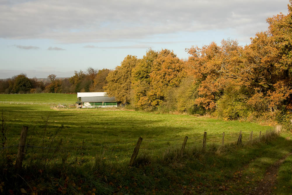 Cotchet Farm