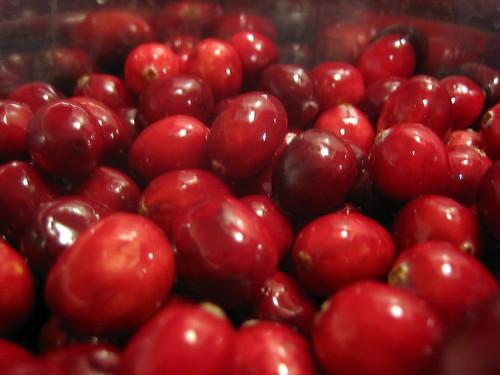 Cranberry Sauce 003