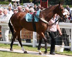 Cartmel Races (May 26 2008)