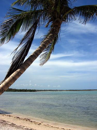 Caribbean Beach in Yucatan