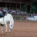 Cow Country Rodeo - Manila Utah - July 19, 2008