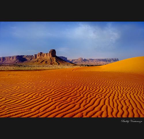nikon searchthebest dunes d70s buddy riyadh saudiarabia budslife buddyventuranza