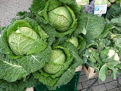 annual plant, savoy cabbage, cabbage, vegetable, leaf vegetable, green, produce, food, collard greens,