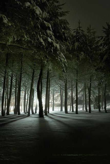 frozen light in a snow weekend, MANZANEDA ☃