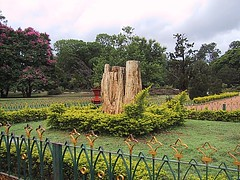 Bangalore 06