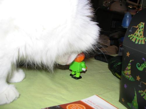 Posey Likes Toys