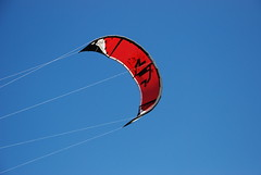 illustration(0.0), toy(0.0), kite sports(1.0), individual sports(1.0), sports(1.0), windsports(1.0), extreme sport(1.0), blue(1.0), sport kite(1.0),