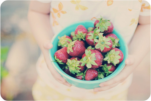 19/52 {Fresh Picked Strawberries}
