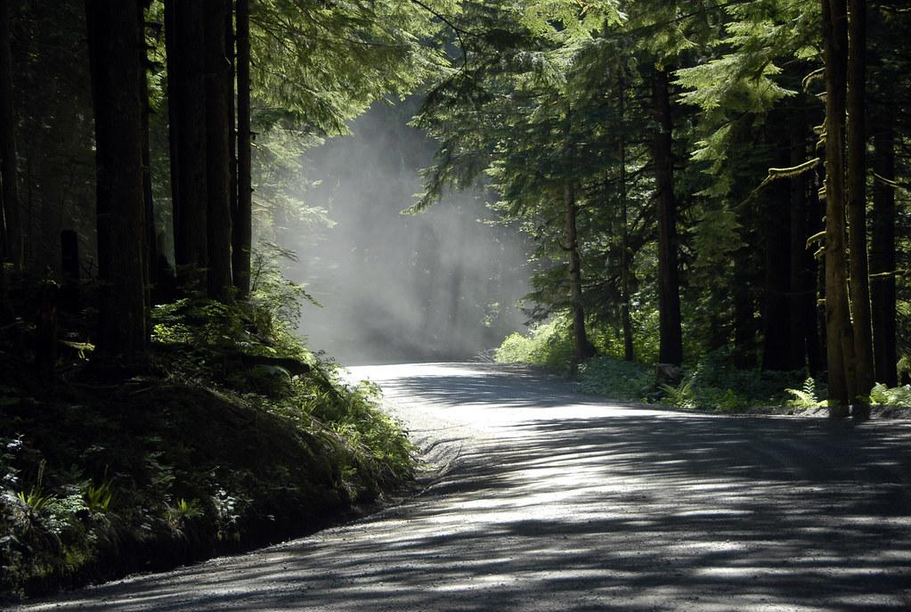 Dry Roads.