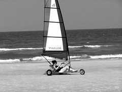sail, white, vehicle, sailing, land sailing, sea, wind, monochrome photography, monochrome, black-and-white,