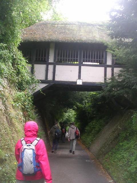 Thatched Bridge, Polesden Lacey