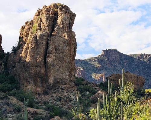 arizona landscape desert superior soe boycethompsonarboretum naturesfinest bej golddragon anawesomeshot natureselegantshots jhaskellus jhaskell jackhaskell panoramafotográfico