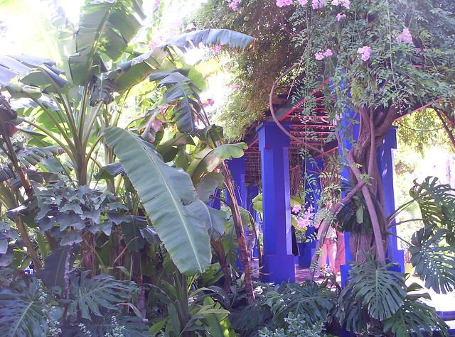 Majorelle el jardin del eden by solo24horas flickr for El jardin del eden