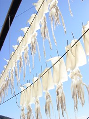 Making surume(Dried Squid) in Otsuki, Kochi Japan
