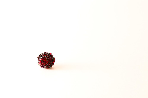 137/365: I'm Berry Alone
