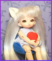 FairyLand PukiPuki Pipi