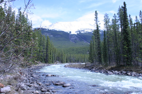 Athabasca River by crawdrewford