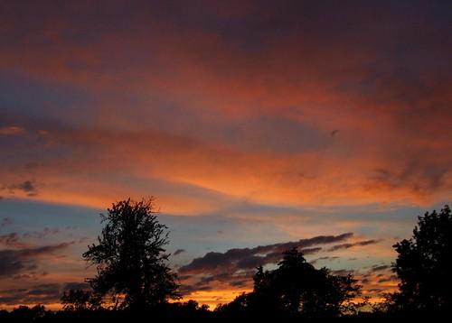 ohio cleveland kirtland holdenarboretum lanterncourt treehugger007 solsticesunset