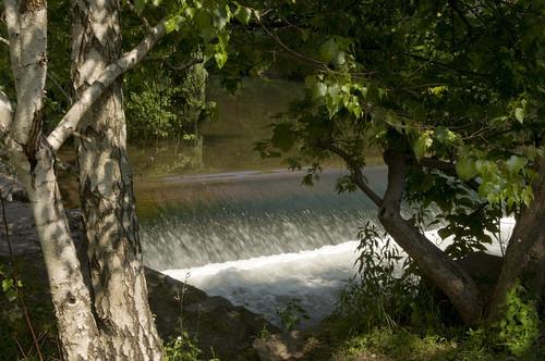 trees river newjersey dam nj hunterdoncounty warrencounty musconetcong finesville