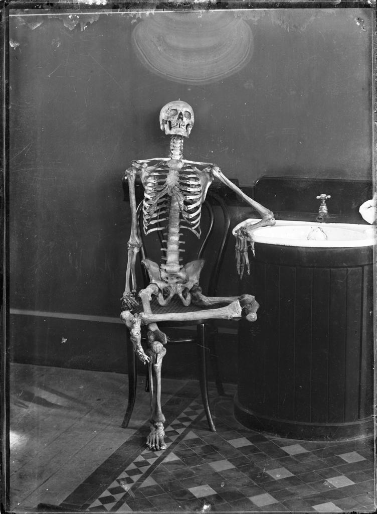 imagen graciosa de esqueleto