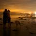 Evening Kiss by Torri 479