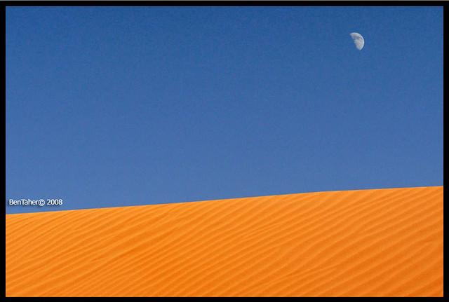 Peace On Desert