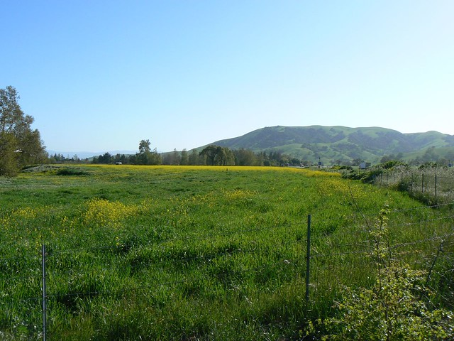 Gilroy Ca Pacheco Pass 16 Flickr Photo Sharing