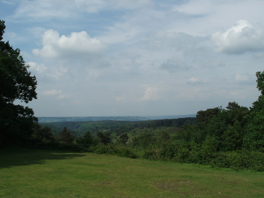 north downs from Leith hill