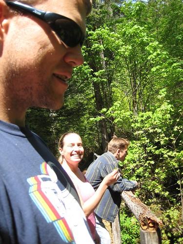 On the log bridge