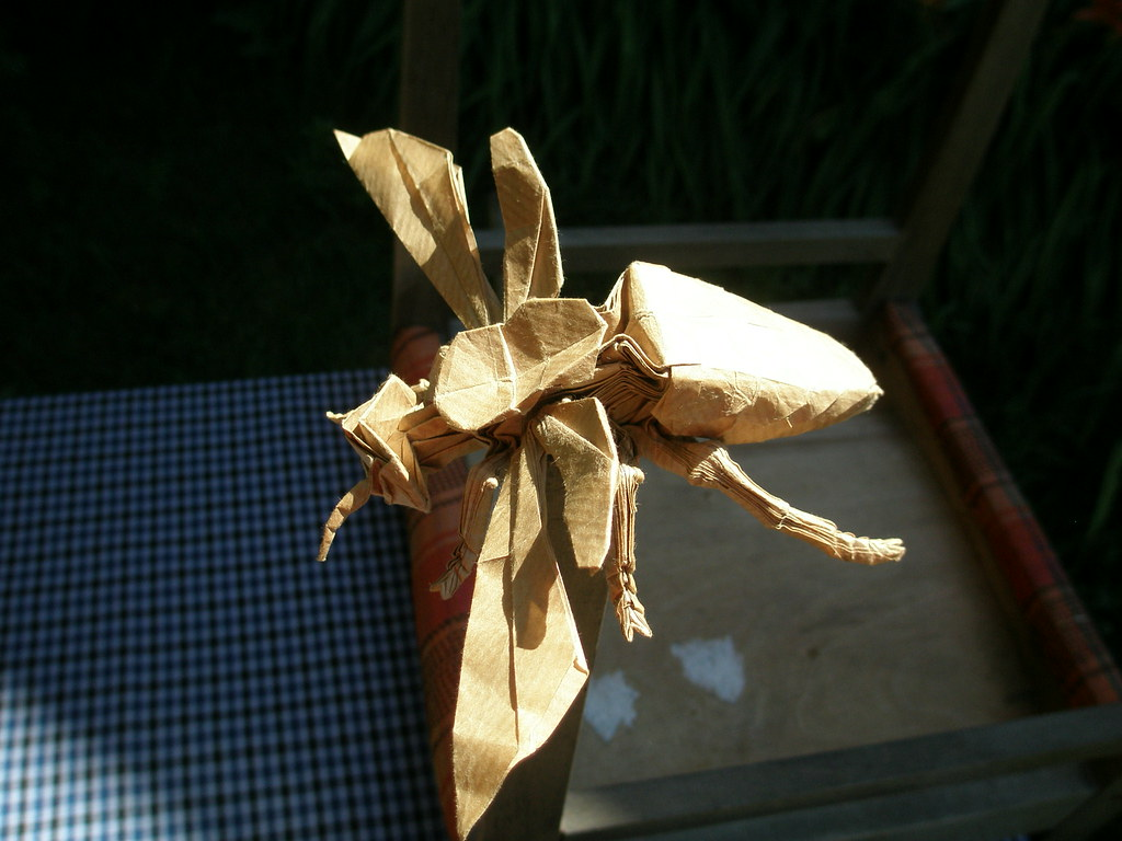 Wasp 26 By Kamiya Satoshi Folded Me