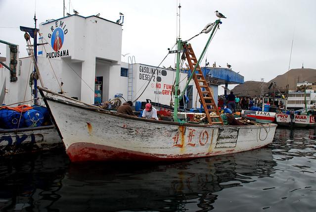En el puerto 1, Pucusana, Lima-Perú, 2008   Flickr - Photo ...