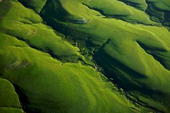 Emerald Spring, Flint Hills