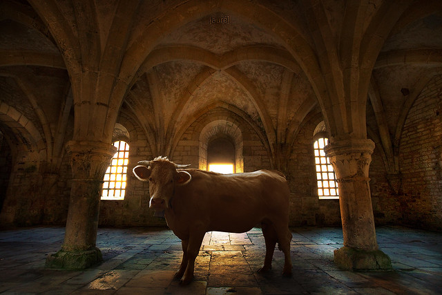 Abbaye de Fontenay - Bestial