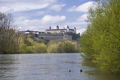 Festung Marienberg (Marienberg Fortress)