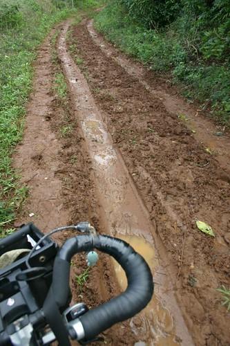 Muddy track on Vava'u Island, Tonga.