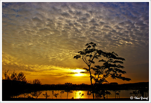 sunset sun sundown explore malaysia a200 setting selangor shahalam section7 lakegarden naturesfinest blueribbonwinner bej sonydslr mywinners abigfave platinumphoto anawesomeshot ibnuyusuf goldstaraward mysonia