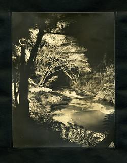 Floodlit Leura Cascades