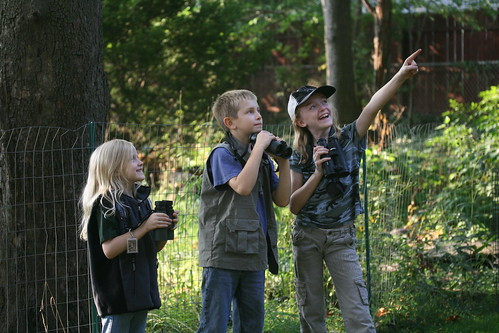 Three Young Birders