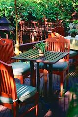 Ocean Spider Pot on a table in an Oriental Garden