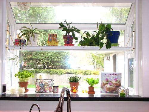 Garden Window Kitchen Kitchen Design Photos