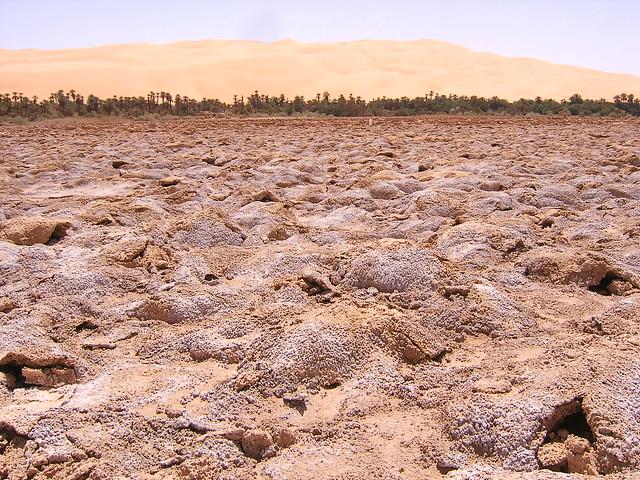 Las maravillas del desierto del Sahara 2358503575_e6aeae4940_z