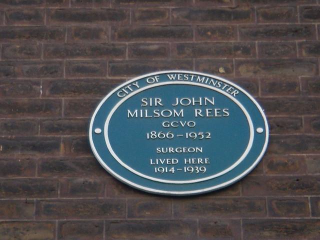 Photo of John Milsom Rees green plaque