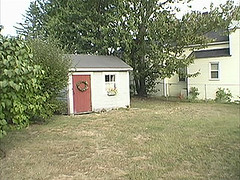 Yard before, as it was when we bought our house in 2002