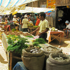 Candoni Market