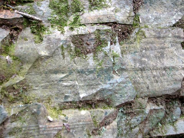 Escorts in granite quarry nc