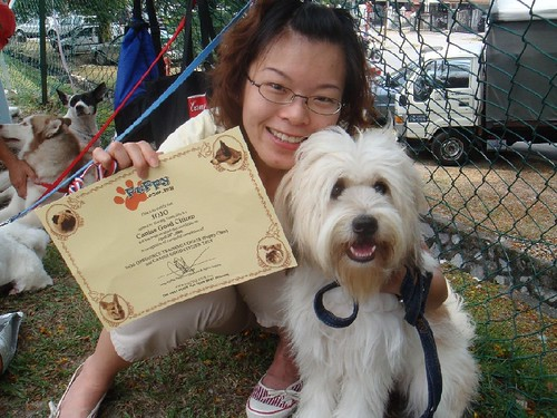 We got it ~~~ dog traning graduation