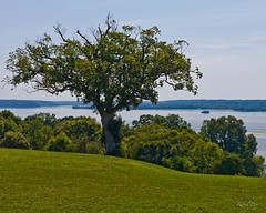 The view from Mount Vernon II