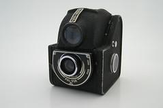 P5310034